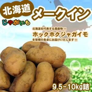 「新じゃが」メークイン 北海道 じゃがいも Lサイズ9.5-10kg前後 送料無料 メークイン...