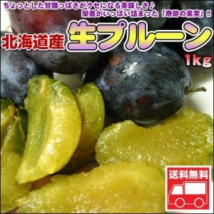 北海道産 生プルーン1kg  送料無料 沖縄は送料別途加算