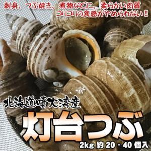 つぶ貝 灯台つぶ 北海道産 2kg 約20-40個入 送料無...