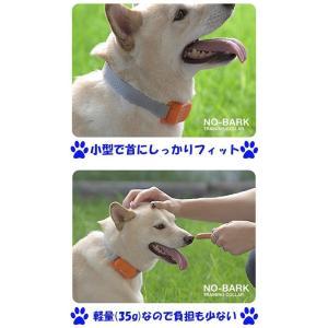 REDDi PET 犬用ムダ吠えしつけ首輪 ノーバーク トレーニングカラー Sサイズ 無駄吠え防止首輪 グッズ  小型犬|dragon-bee|03