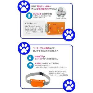 在庫あり【送料無料】REDDi PET 犬用ムダ吠えしつけ首輪 ノーバーク トレーニングカラー Sサイズ|dragon-bee|05