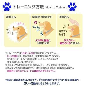 REDDi PET 犬用ムダ吠えしつけ首輪 ノーバーク トレーニングカラー Sサイズ 無駄吠え防止首輪 グッズ  小型犬|dragon-bee|07