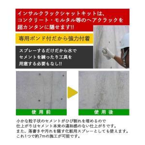 あすつく コンクリート 補修剤 インサル クラ...の詳細画像3