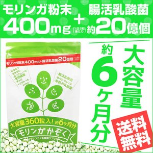 あすつく モリンガかぞく 大容量約6か月分 モリンガ家族 モリンガサプリ 腸活ダイエット 野菜 乳酸菌 食物繊維 ヒルナンデス|dragon-bee