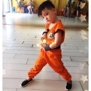 【送料無料】コスチューム キッズ ドラゴンボール 悟 100-120cm 仮装 ハロウィン コスプレ 悟空|dragon-bee