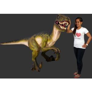 長さ342cm!ドロマエオサウルス 等身大フィギュア         ※この商品は別途送料かかります、ご注文後お知らせいたします|dream-f