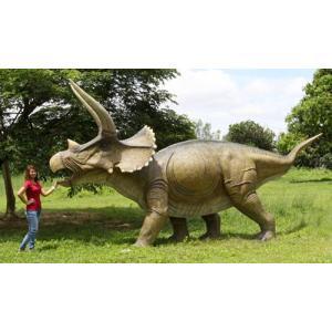 全長6.2m!トリケラトプス 超巨大フィギュアC(恐竜等身大フィギュア)※この商品は別途送料かかります、ご注文後お知らせいたします|dream-f