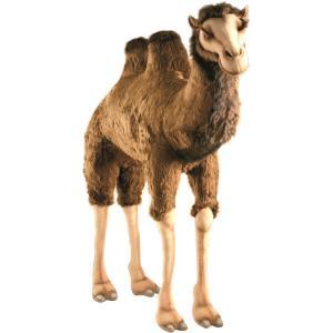 HANSAぬいぐるみ動物シリーズの「ラクダ(駱駝)」です。砂漠でゆったりと生活しています! ※基本的...