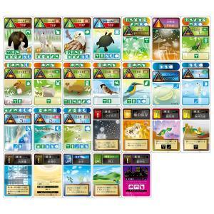 実験キット 食物連鎖カードゲーム 生態系の秘密 小学生 理科 中学年 生物|dream-realize
