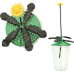 実験キット 小麦粉ねんどでフラワーモデルキット 小学生 理科 低学年 植物|dream-realize
