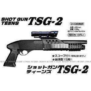 エアーショットガン ティーンズ TSG-2|dream-up