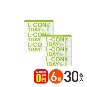 エルコンワンデー 30枚入 6箱セット/ 送料無料 / 1day / オマケ付き