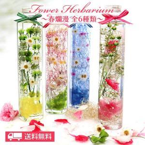 母の日 ギフト 花 プレゼント  花ギフト 母の日2021  フラワーギフト  送料無料 ハーバリウム春爛漫(完成品)|dreamkoubou