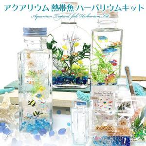 【セット内容】 ・オイル・ボトル取扱い方法&ハーバリウムの作り方説明書1枚 ・熱帯魚シール1枚 ・花...