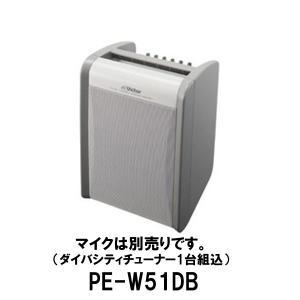 ポータブル ワイヤレスアンプ PE-W51DB/(ダイバーシティチューナー同梱)スピーカー アンプ/JVCビクター(Victor) dreammobile