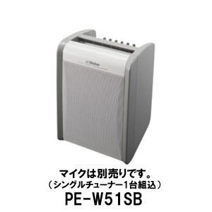 ポータブル ワイヤレスアンプ PE-W51SB(シングルチューナー組込)スピーカー アンプ/JVCビクター(Victor) dreammobile