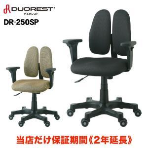 オフィスチェア テレワーク ワークチェア パソコンチェア  DUOREST デュオレスト 高機能チェア 回転イス 椅子 チェア 腰痛 OA DR-250SP