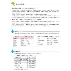 送料無料 ミネラルウォーター 久米島(沖縄・阿嘉高原)の天然水 超軟水 2L 6本 健康 赤ちゃん ミルク 健康|dreamtoys-store|02