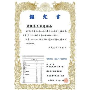 送料無料 ミネラルウォーター 久米島(沖縄・阿嘉高原)の天然水 超軟水 2L 6本 健康 赤ちゃん ミルク 健康|dreamtoys-store|04