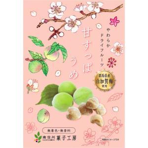 甘すっぱうめ20g×5袋|driedfruit