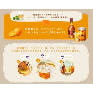サントリー ブランデー(V.O) 4Lペットx4本ケース販売(国産ブランデー)(果実酒づくり)(梅酒づくり)|drikin|02