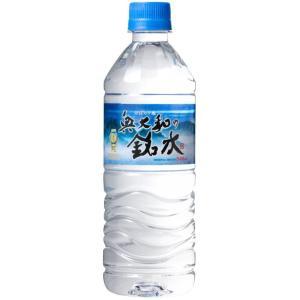 永伸商事 奥大和の銘水 PET 540m×24本|drink-next