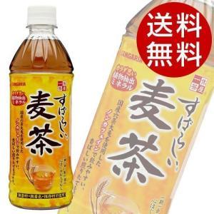 サンガリア すばらしい麦茶 500ml 48本 (麦茶 お茶) 『送料無料』※北海道・沖縄・離島を除く|drinkmarchais