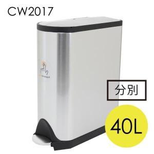 シンプルヒューマン バタフライ リサイクラー ステンレス 40L CW2017 『送料無料』※北海道・沖縄・離島を除く|drinkmarchais