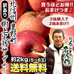 予約販売 訳あり りんご 樹上 完熟 サンふじ 北信州産 豊...