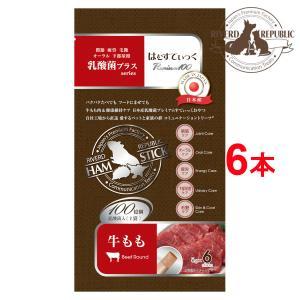 【直送便】小動物 おやつ はむすてぃっく 乳酸菌プラス Premium100 牛もも 6本入 日本産【素材100%/えさ/国産/ペットフード】|drjpet