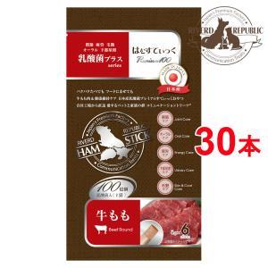 【直送便】小動物 おやつ はむすてぃっく 乳酸菌プラス Premium100 牛もも 30本入 (6本×5袋) 日本産【素材100%/えさ/国産/ペットフード】|drjpet