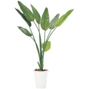 人工樹木 FGN-ST(ストレチア) ジンコウジュモク(24-6107-05)【1個単位】|drmart