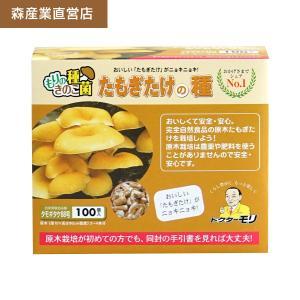 タモギタケ種駒 【たもぎたけ種駒100個】 [タモギタケ菌/たもぎたけ菌/原木タモギタケ栽培/種駒] 日本で一番売れてます! drmori1