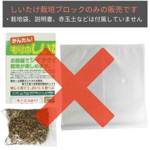シイタケ栽培キット 【もりのしいたけ農園おかわ...の詳細画像2