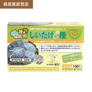 シイタケ成型駒 【しいたけ成型駒100個】 [しいたけ菌/椎茸菌/しいたけ栽培/シイタケ栽培/椎茸栽培] 日本で一番売れてます! drmori1