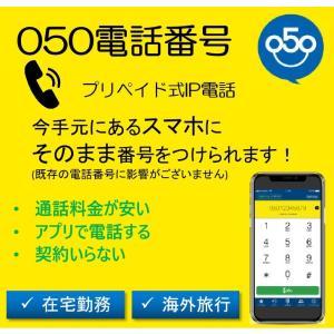 プリペイド電話 050IP電話 番号発行 ユーザーIDとパスワード発行 国際電話カード 配送不要 送...