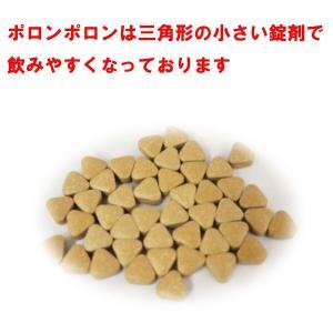 ポロンポロン222 35種類天然ハーブ配合 体内毒素排出 蔡先生の健康グッズ|drtsai-kenkosyop|02
