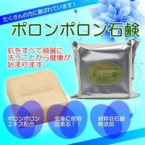 ポロンポロン石鹸 蔡篤俊先生推奨 ポロンポロンエキス配合、無添加、純粋な石鹸|drtsai-kenkosyop