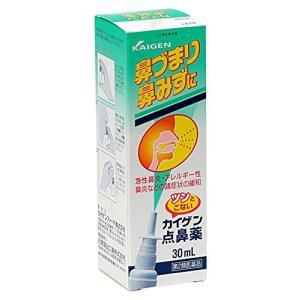 カイゲン点鼻薬 30ml【第2類医薬品】