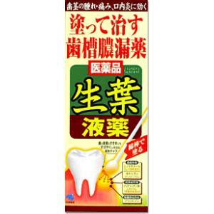 塗って治す歯槽膿漏薬 生葉液薬 小林製薬【第3類医薬品】