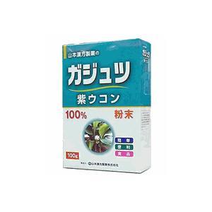 ガジュツ粉末100%(紫ウコン) 山本漢方|drug
