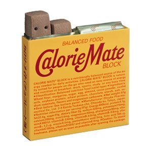 Tポイント5倍相当 【P】 大塚製薬 カロリーメイトブロック チョコレート4本入×30個セット