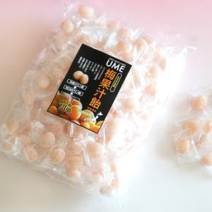 梅果汁飴 徳用袋500g ds-shop-japan