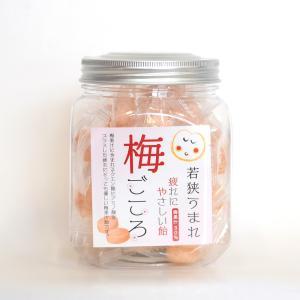 梅果汁飴 ボトル ds-shop-japan
