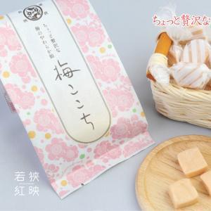 梅ここちソフトキャンディー ds-shop-japan