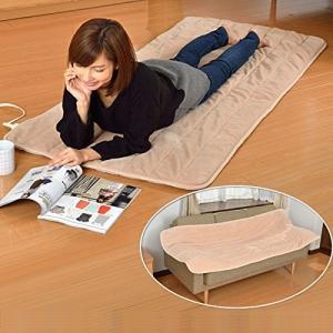 山善 YAMAZEN 洗えるどこでもカーペット 幅80×長さ180cm YWC-181F C ベージュの商品画像