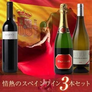 (ポイント10倍)(送料無料)ハイクオリティ 厳選スペインワイン3本セット|dskwine