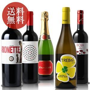 (送料無料)〜パーティーや飲み会で〜みんなで楽しむスペインワイン5本セット|dskwine