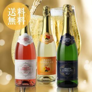 (送料無料)みんなで乾杯!〜フランス カジュアルスパークリングワイン3本セット|dskwine