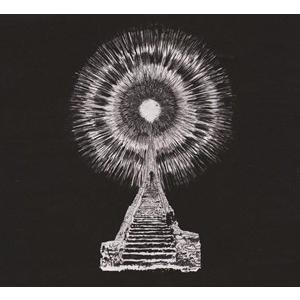 輸入盤 WOUNDED KINGS / VISIONS IN BONE [CD]